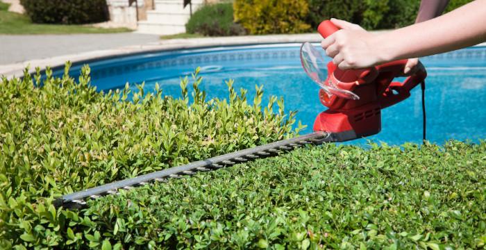 ¿Qué servicio auxiliar puedes necesitar en verano?